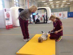 Проверка физических показателей: давления, пульса в разных состояниях